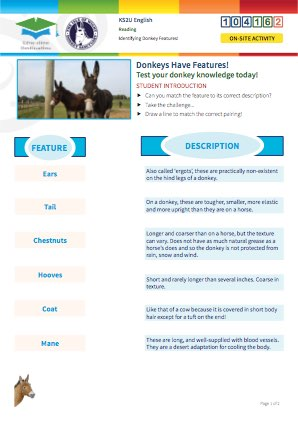 Click to view Resource 104162 Understanding Donkey Features