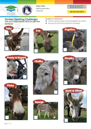 Click to view Resource 104022 Spot the Donkey! Team Challenge