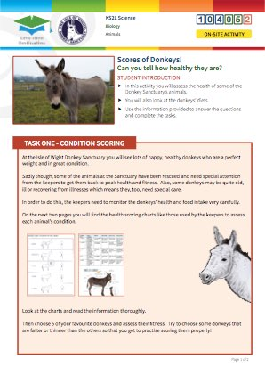 Click to view Resource 104052 Scores of Donkeys!