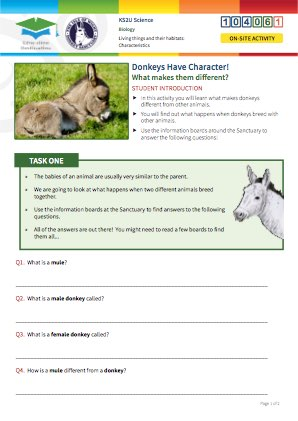 Click to view Resource 104061 Donkeys Have Character!