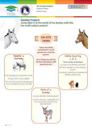 Click to view Resource 104271 Donkey Project!