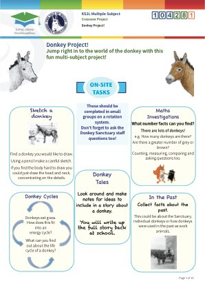 Click to view Resource 104281 Donkey Project!