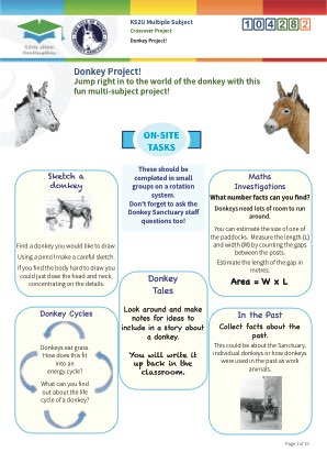 Click to view Resource 104282 Donkey Project!