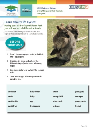Click to view Resource 152091 Life Cycles of Mammals and Birds