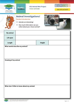 Click to view Resource 152011 Animal Mini-Project