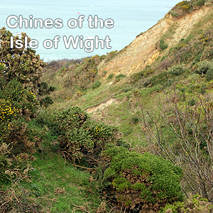 Chines of the Isle of Wight Logo