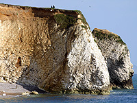 External picture of Freshwater Bay